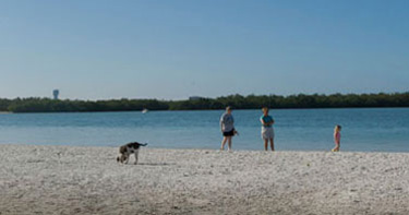 Rules For Dogs On Fort Myers Beach